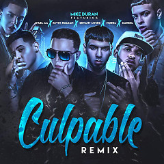 Culpable (Remix) (Single)