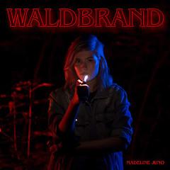Waldbrand (EP)