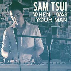 When I Was Your Man (Single) - Sam Tsui