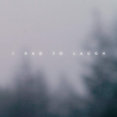 I Had To Laugh (Single)