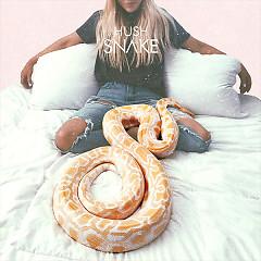 Snake (Single) - Hush