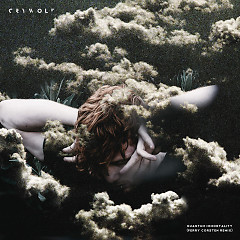 Quantum Immortality (Ferry Corsten Remix) - Crywolf