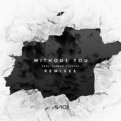 Without You (Remixes) - Avicii