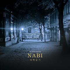 새벽공기 - Nabi