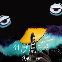 什么鸟日子 / Ngày Quái Quỷ Gì
