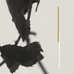 Grafts (EP)