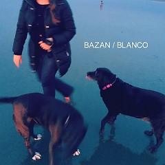 Blanco - David Bazan