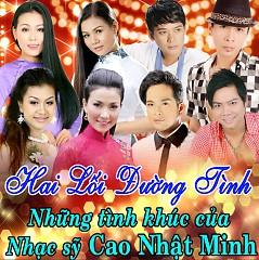 Hai Lối Đường Tình - Trường Sơn,Lưu Ánh Loan,Lý Diệu Linh,Hoàng Đăng Khoa,Đoàn Minh,Dương Hồng Loan