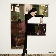 F - PUSHIM