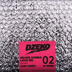 Never Gonna Love Me (Single) - Dzeko, Sam James