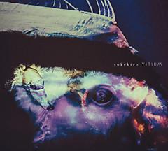 VITIUM (Deluxe Edition) CD1