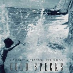 I Predict A Graceful Expulsion - Cold Specks