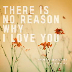 There Is No Reason Why I Love You (Single)