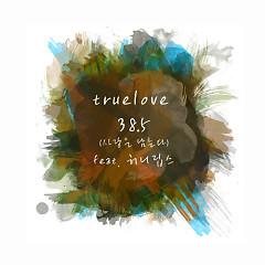 38.5 (Love Remains) - Truelove