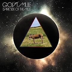 Dark Side Of The Mule (CD3)