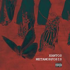 Metamorfosis (Single)