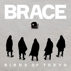 Brace - Birds Of Tokyo