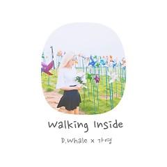 Walking Inside (Single) - D.Whale