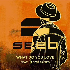 What Do You Love (Single)