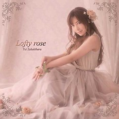 Lofty rose