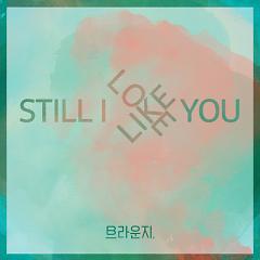 Still I Like You