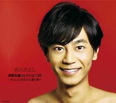 Hikawa Kiyoshi Enka Meikyoku Collection 20 -Choito Kimagure Wataridori- - Hikawa Kiyoshi