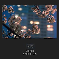 Spring Night (Single) - Tory