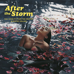 After The Storm (Single)