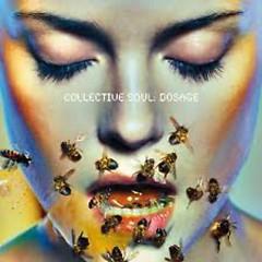 Dosage - Collective Soul