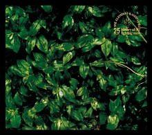 Kokoro ni Hana wo CD1 - Elephant Kashimashi