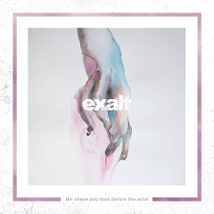 The Shape You Took Before The Ache - Exalt