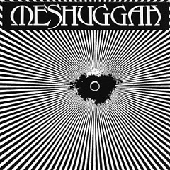 Psykisk Testbild - Meshuggah