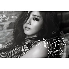 Dripping Tears - Son Dam Bi