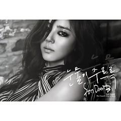 Dripping Tears - Son Dam Bi