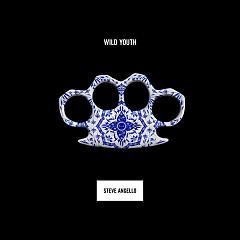 Wild Youth - Steve Angello