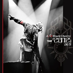 Acid Black Cherry TOUR '2012' LIVE CD Disk 2