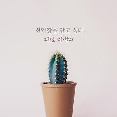 Embracing A Cactus (Single)
