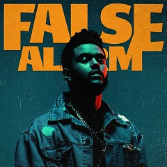 False Alarm (Single)