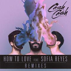 How To Love (Remixes) - Cash Cash,Sofia Reyes