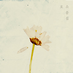 Sketchbook - Ho So