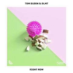 Right Now (Single) - Tom Budin, DLMT