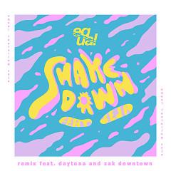 Shakedown (Remix) (Single)