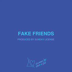 Fake Friends (Single)