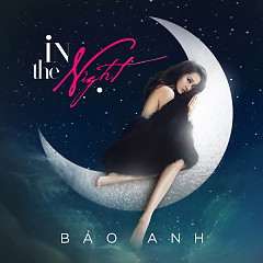 In The Night (Single)