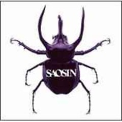 Saosin (Japan Import)