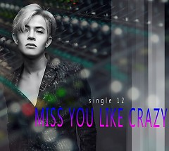 Miss You Like Crazy (Single)