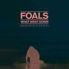 What Went Down (Bandwidth Remix) (Single)