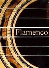 Flamenco Guitar Collection