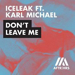 Don't Leave Me (Single)