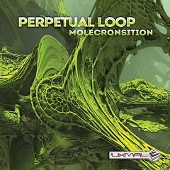 Molecronsition - Perpetual Loop